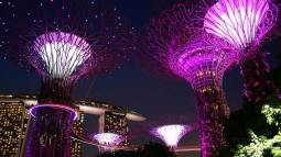 Night at Gardens by the Bay