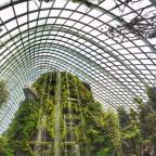 Indoor waterfall at Gardens by the Bay